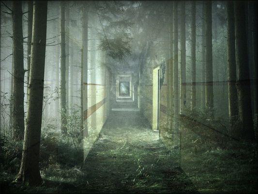 Wald und Flur