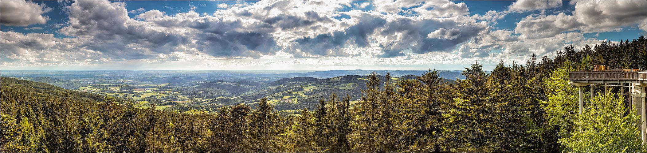 Wald-Wipfel-Weg - Sankt Englmar
