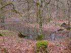 ..Wald..1 ..