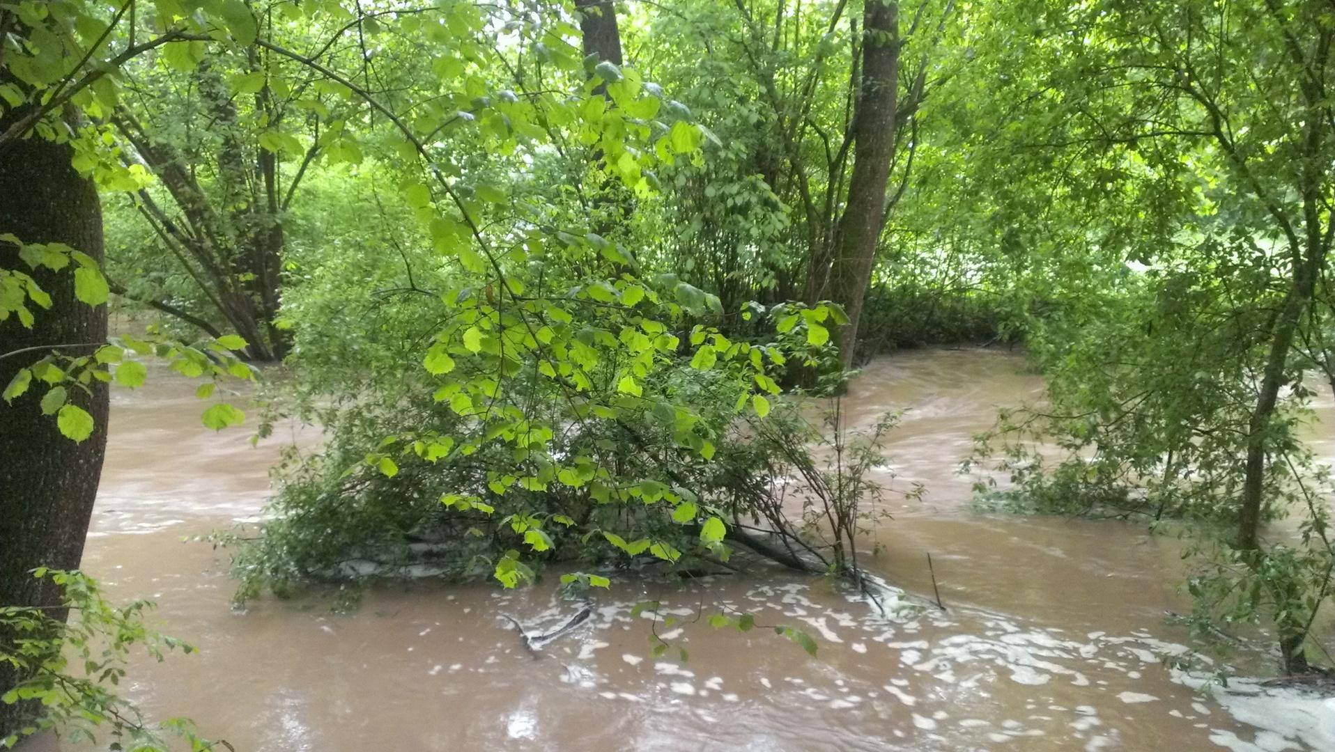 Waldbach bei Hochwasser 2013