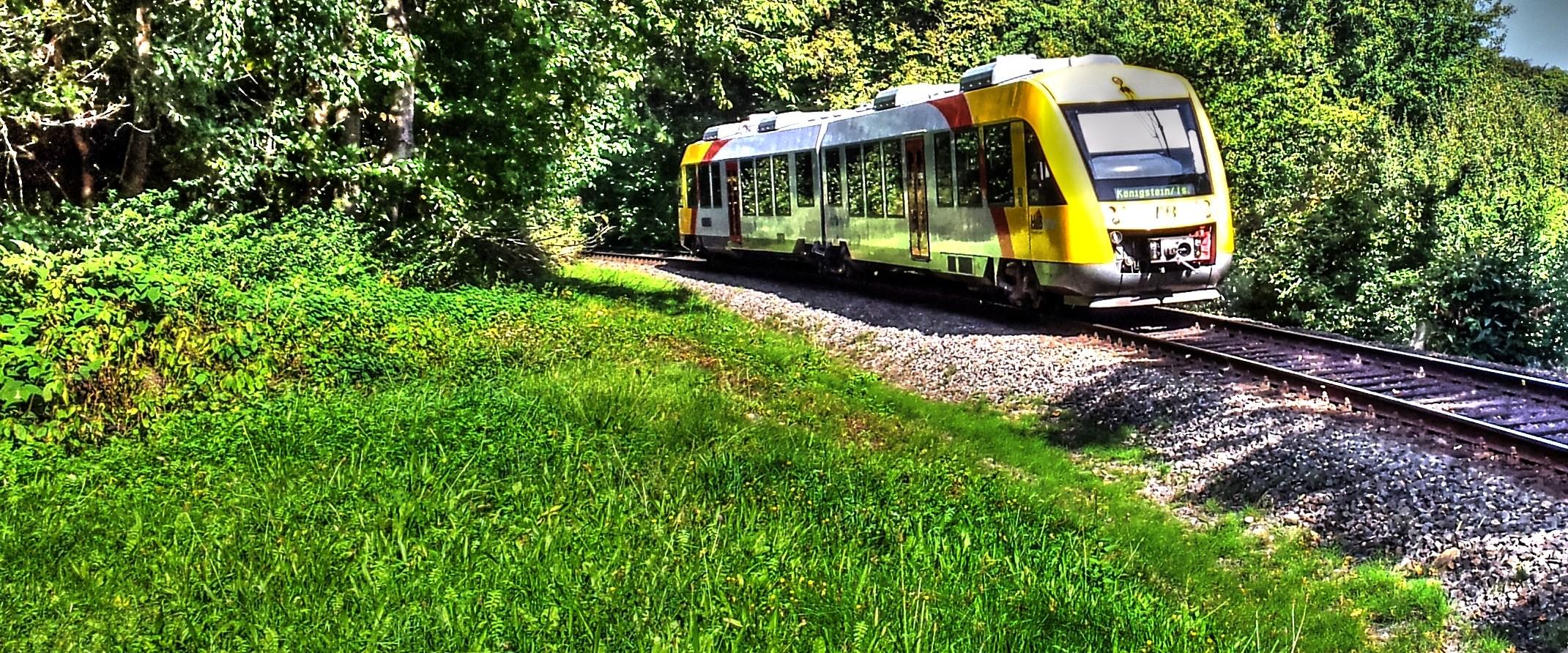 Waldbahn Königstein