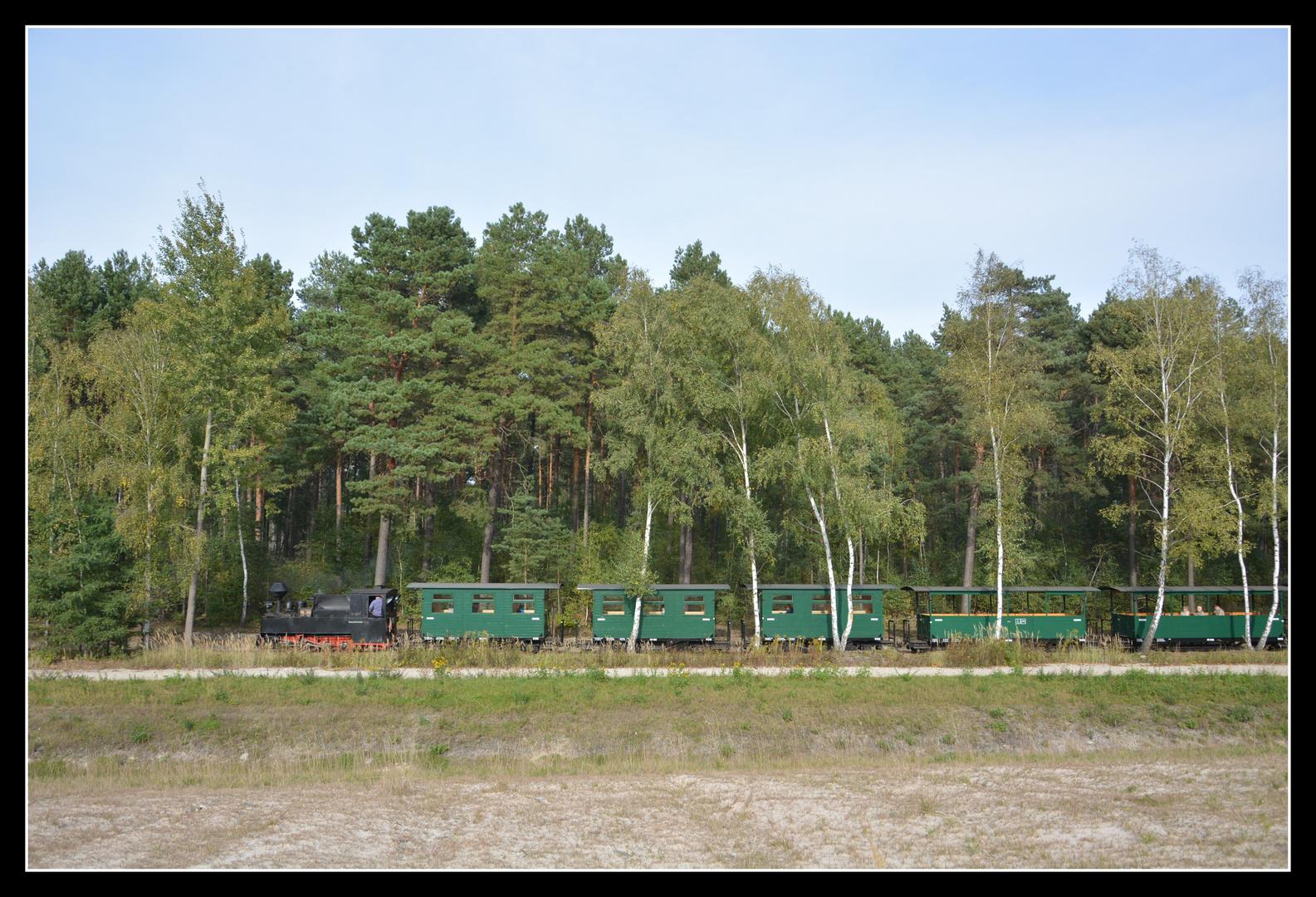 Waldbahnzug