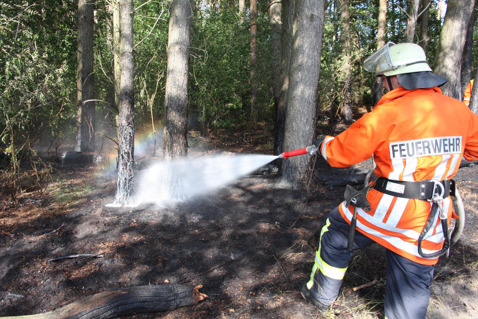 Waldbrand in Empede bei Neustadt am Rübenberge