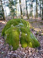 Waldeslust (1)