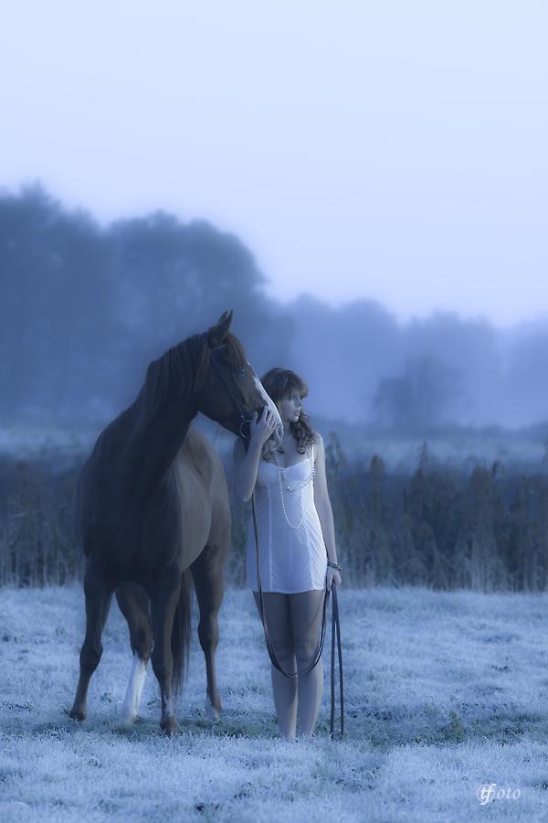 Waldfee mit Pferd