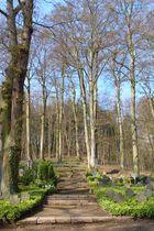 Waldfriedhof in Maria Laach