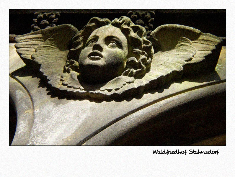 Waldfriedhof Stahnsdorf (1)
