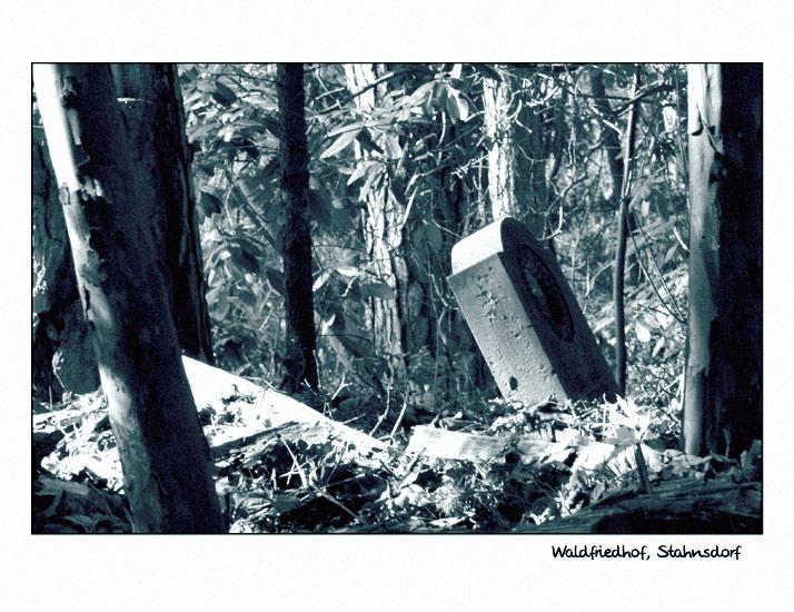 Waldfriedhof Stahnsdorf (2)