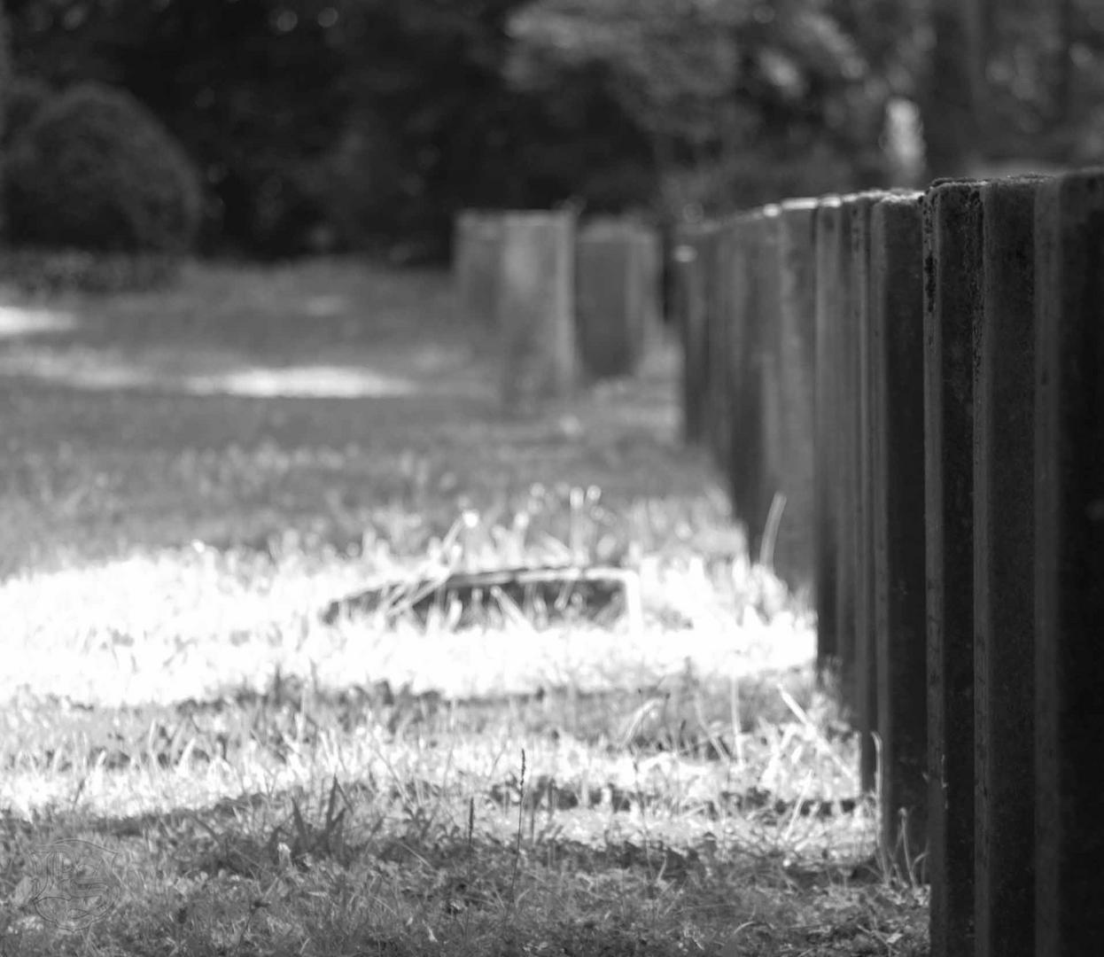 Waldfriedhof Stuttgart, Kriegsgräber