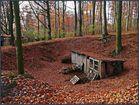 Waldfund