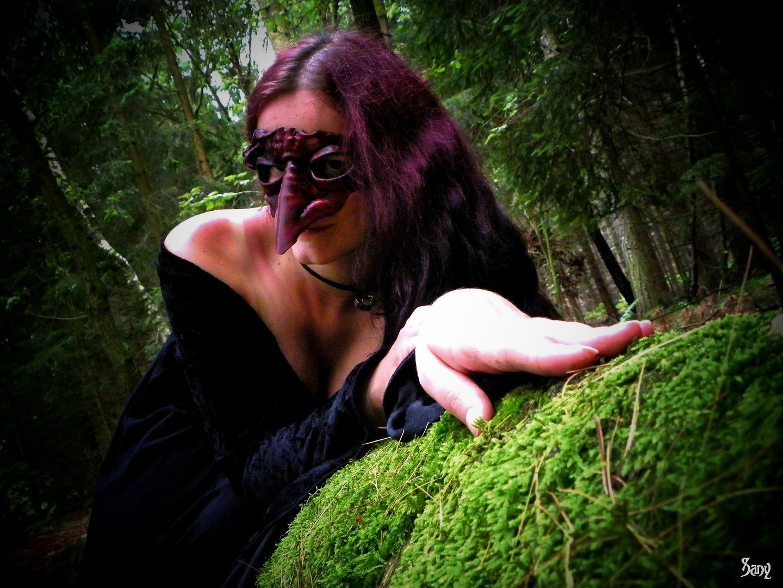 Waldgestalt I