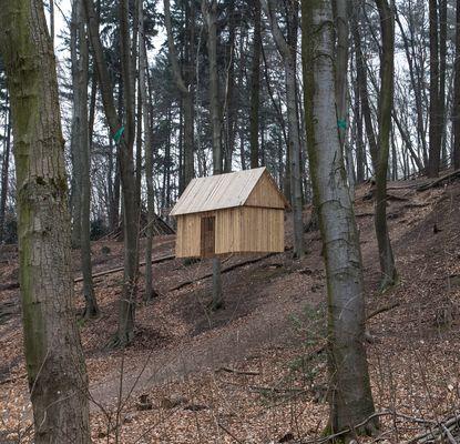 Waldkunst 6