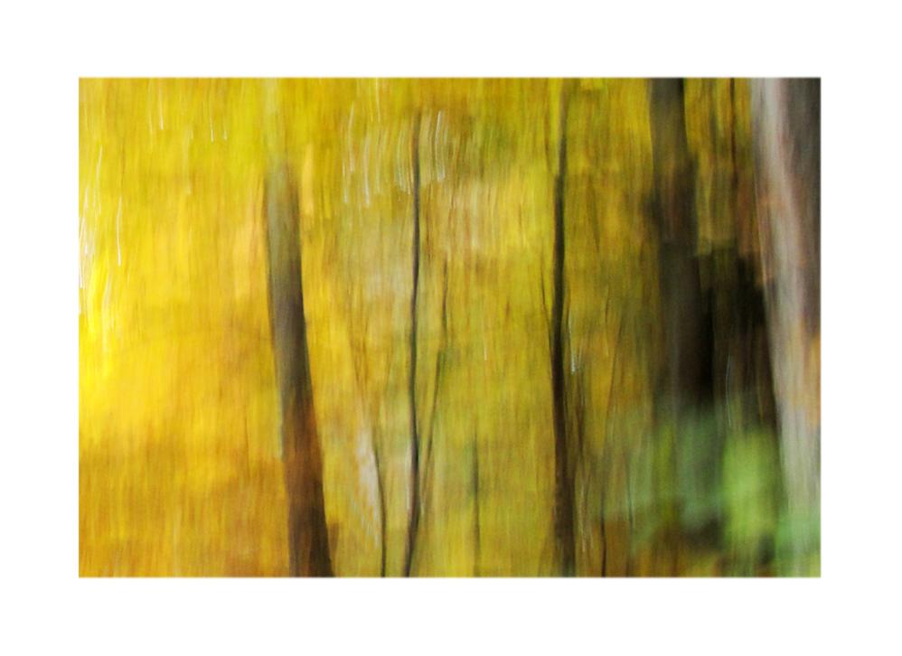 Waldmalerei (2)
