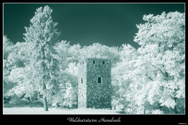 Waldnersturm Hemsbach