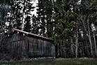 Waldscheune