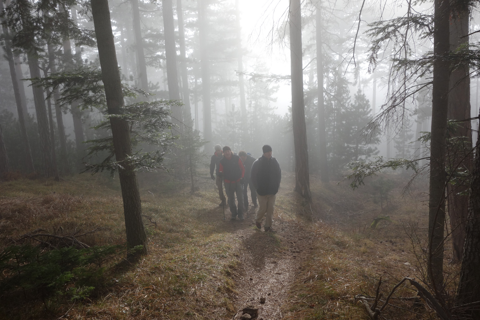 Waldschrate