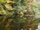 Waldsee bei der Ravennaschlucht