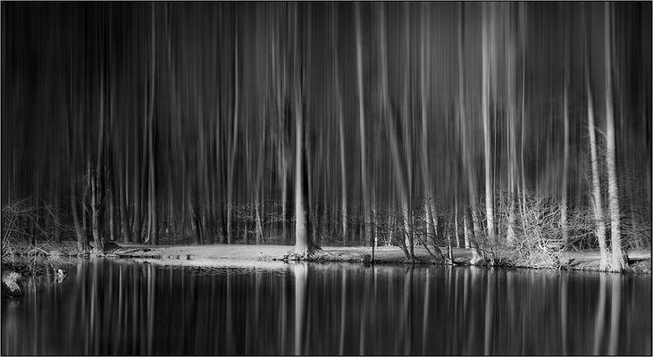 Waldsee(h)