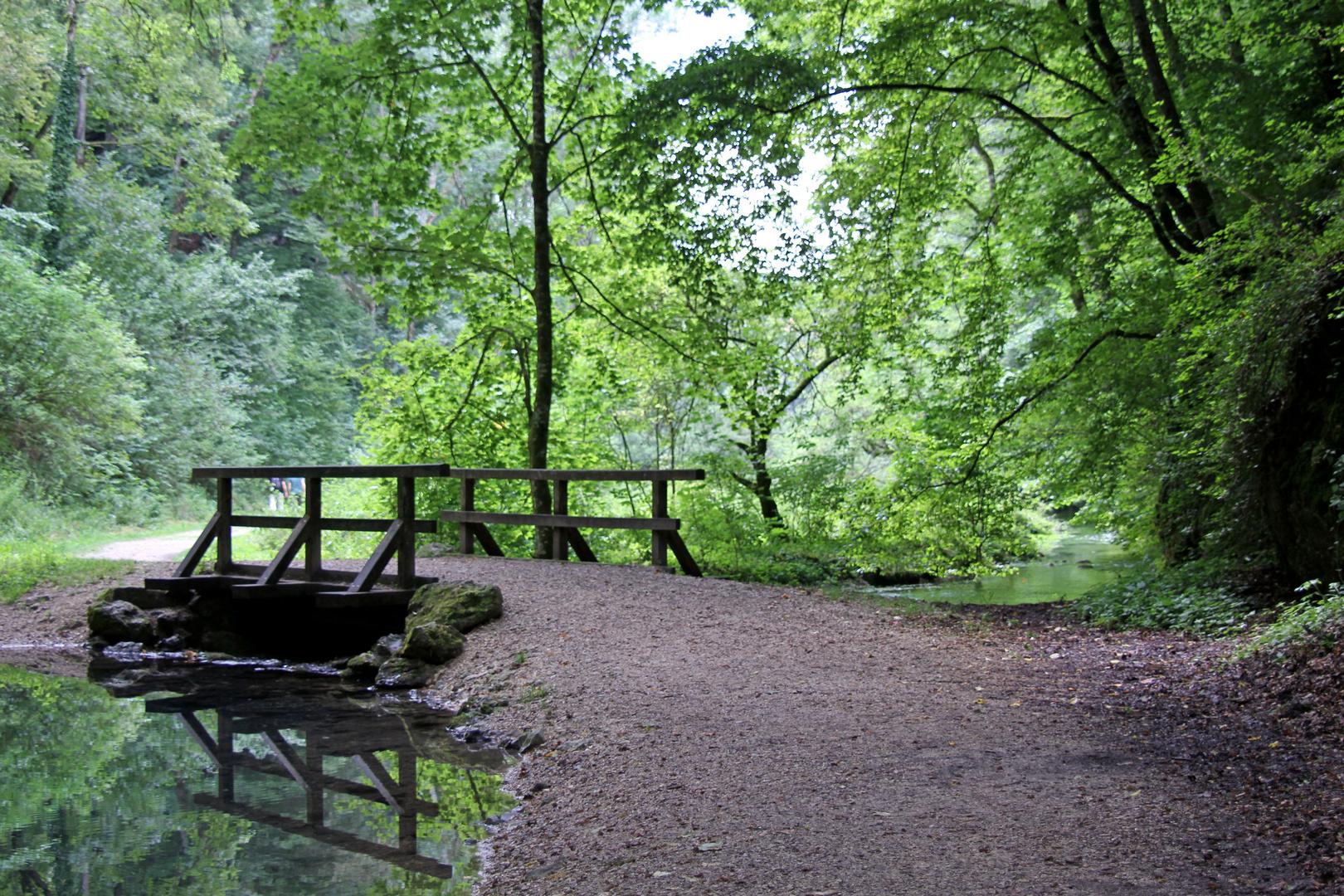 Waldspaziergang in Hayingen