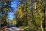 Waldspaziergang mit Trautel