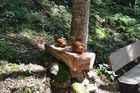 Waldsteig #2