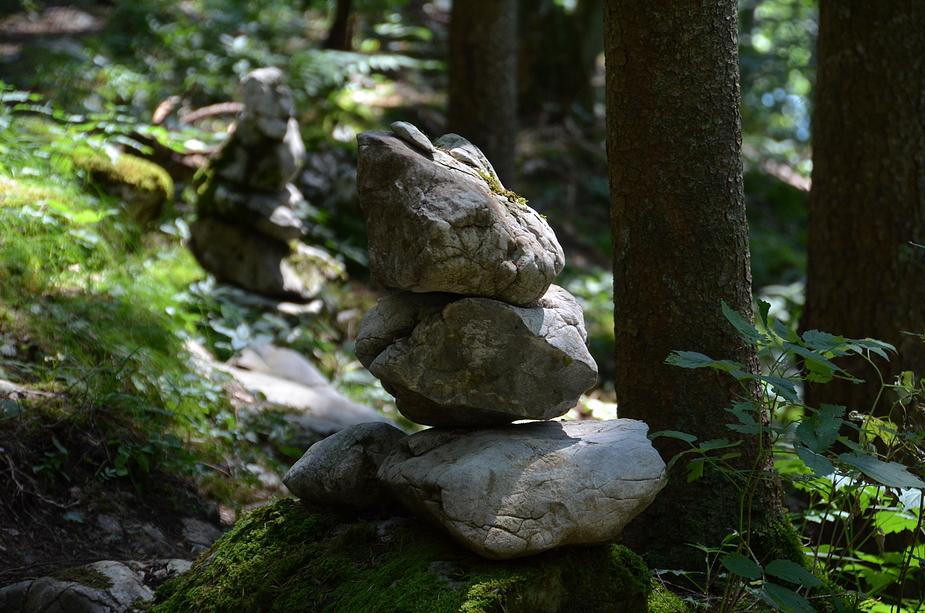Waldsteig #3