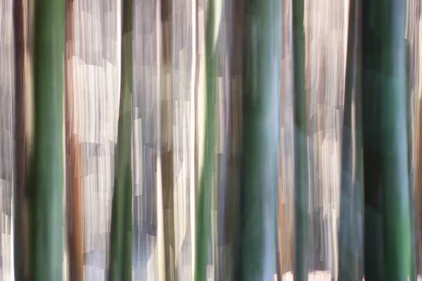 Waldsummen