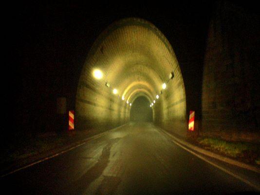 Waldtunnel bei Nacht