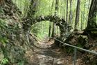 Waldweg mit Felsbogen