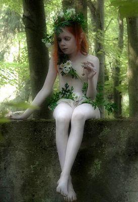 Waldwesen...