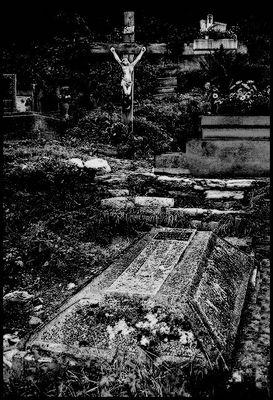Walk in the Graveyard