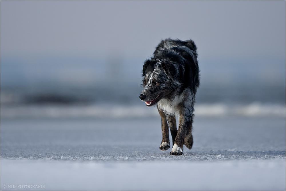 Walk on....
