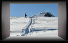 Walking in a winter wonderland Tag 16