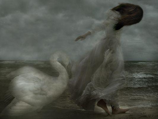 Walking in the wind