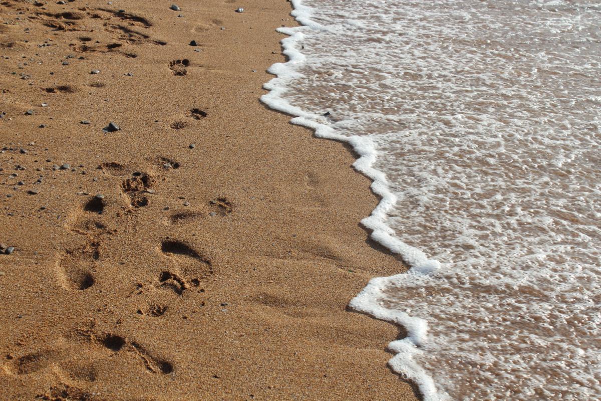 Walking next to the sea.