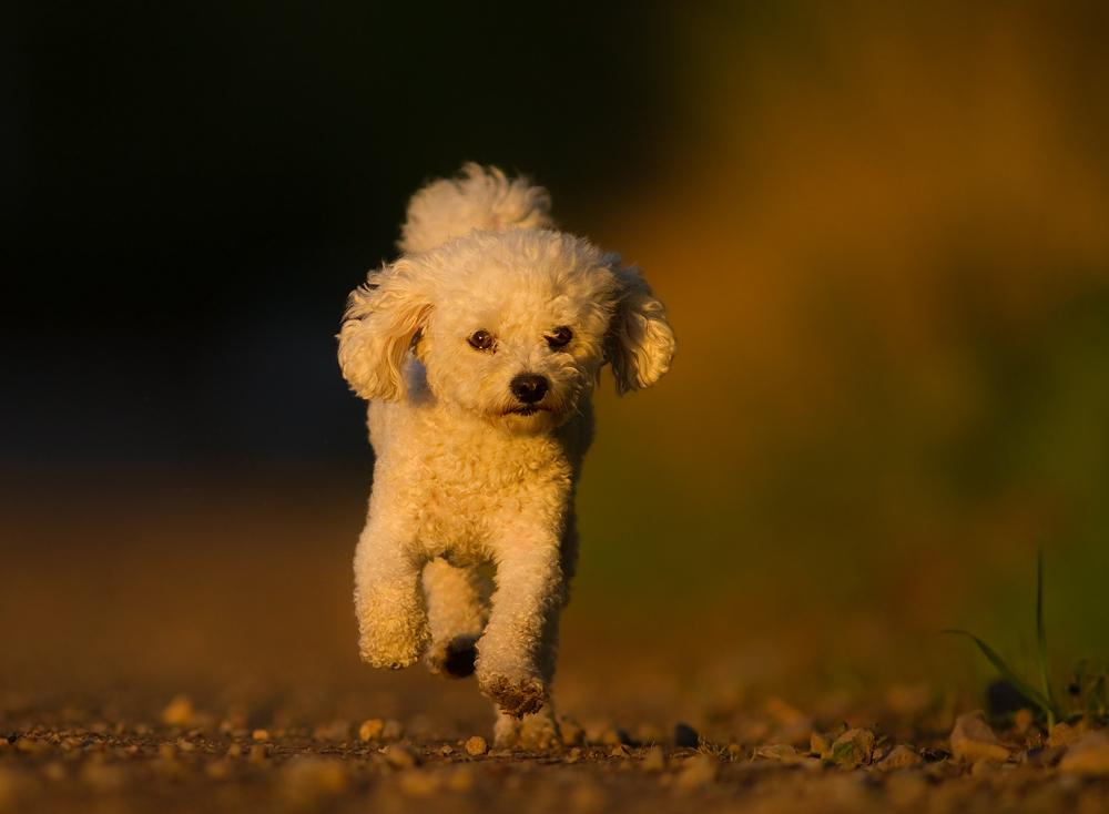 Walking on sunshine..