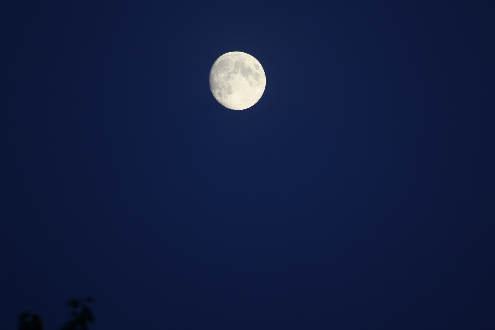 Walking on the moon...