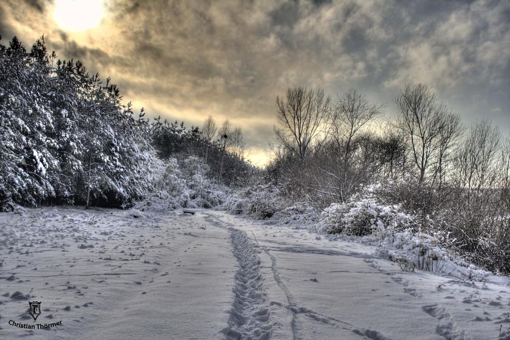 Walking through a winterwonderland