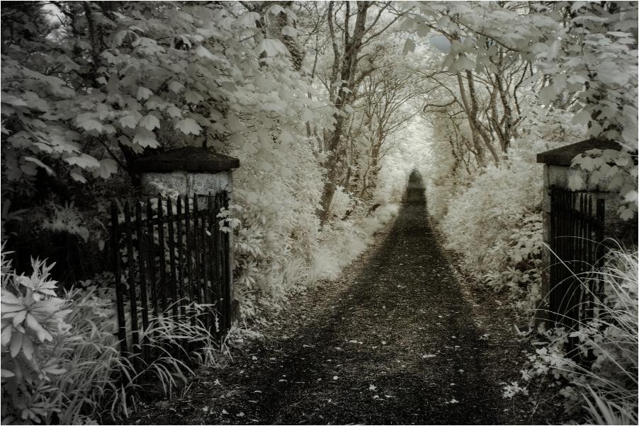 Walkway to St. Thomas