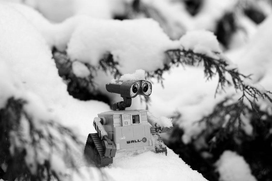 Wall-E und Schnee