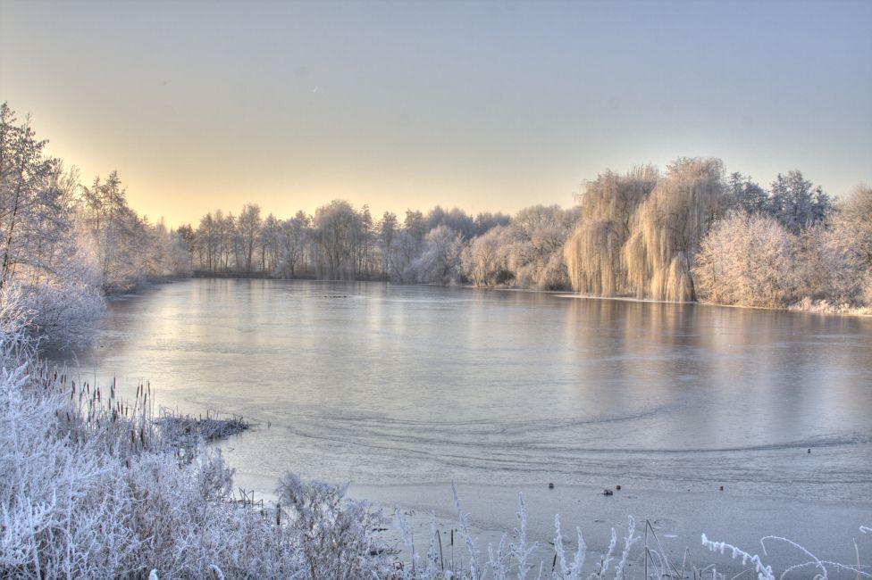 Wallenstedter Teich