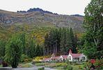 Walter Peak High Country Farm