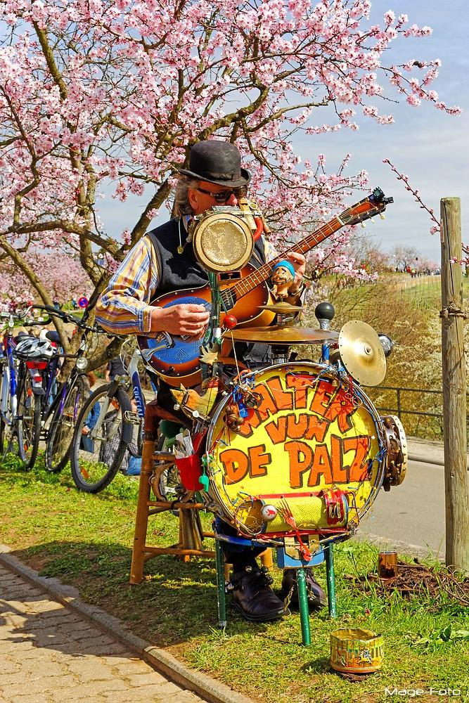Walter vun de Palz - One Man Band