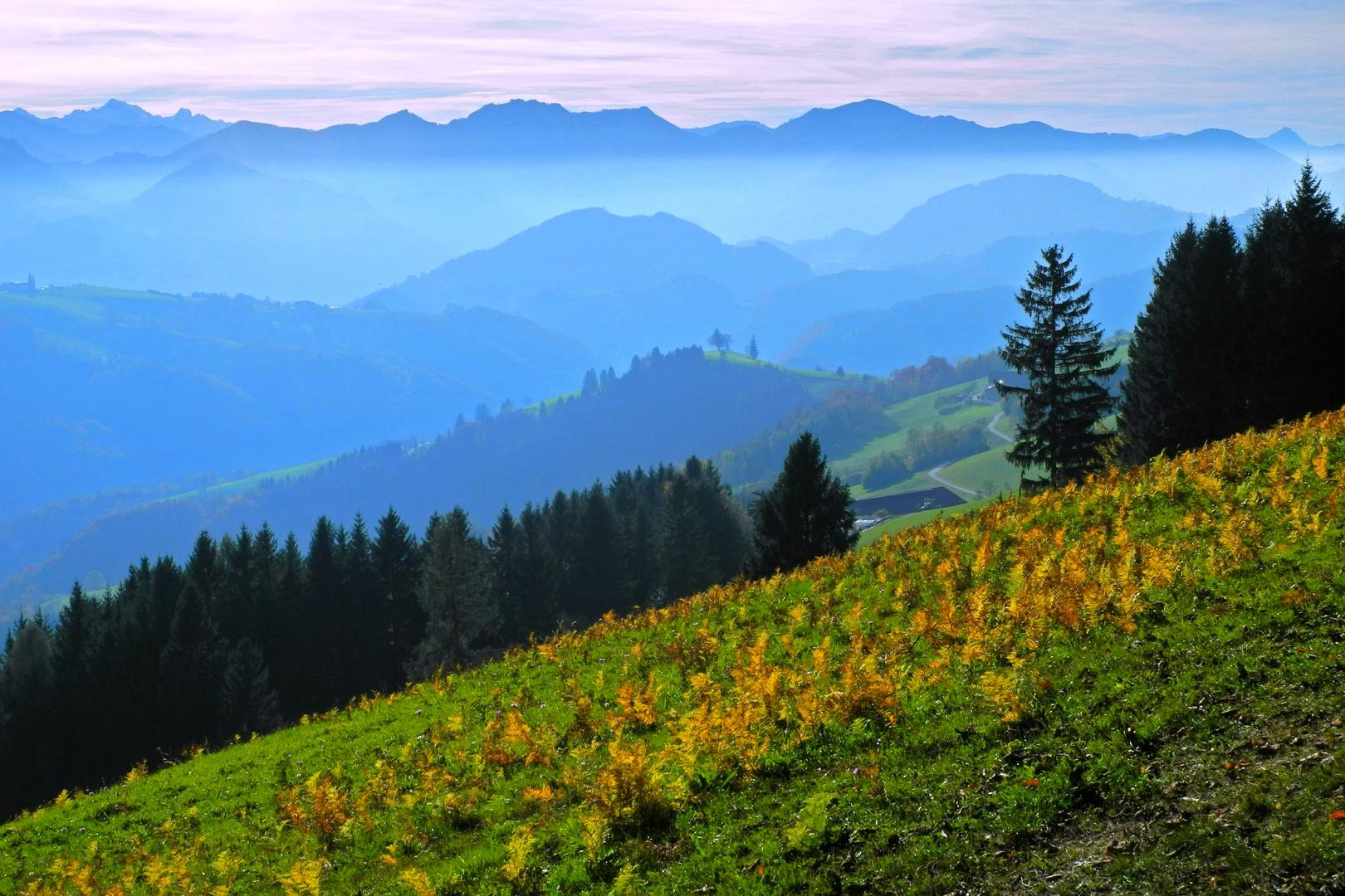 Wanderbares Alpenvorland.