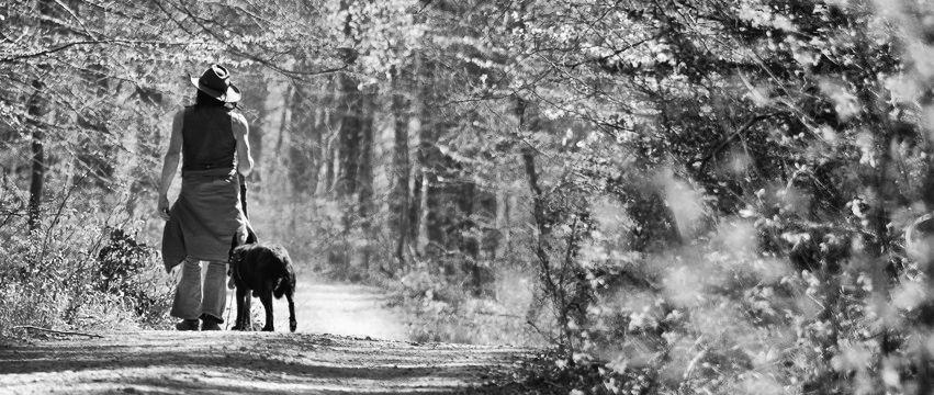 Wanderer im Wald: in s/w