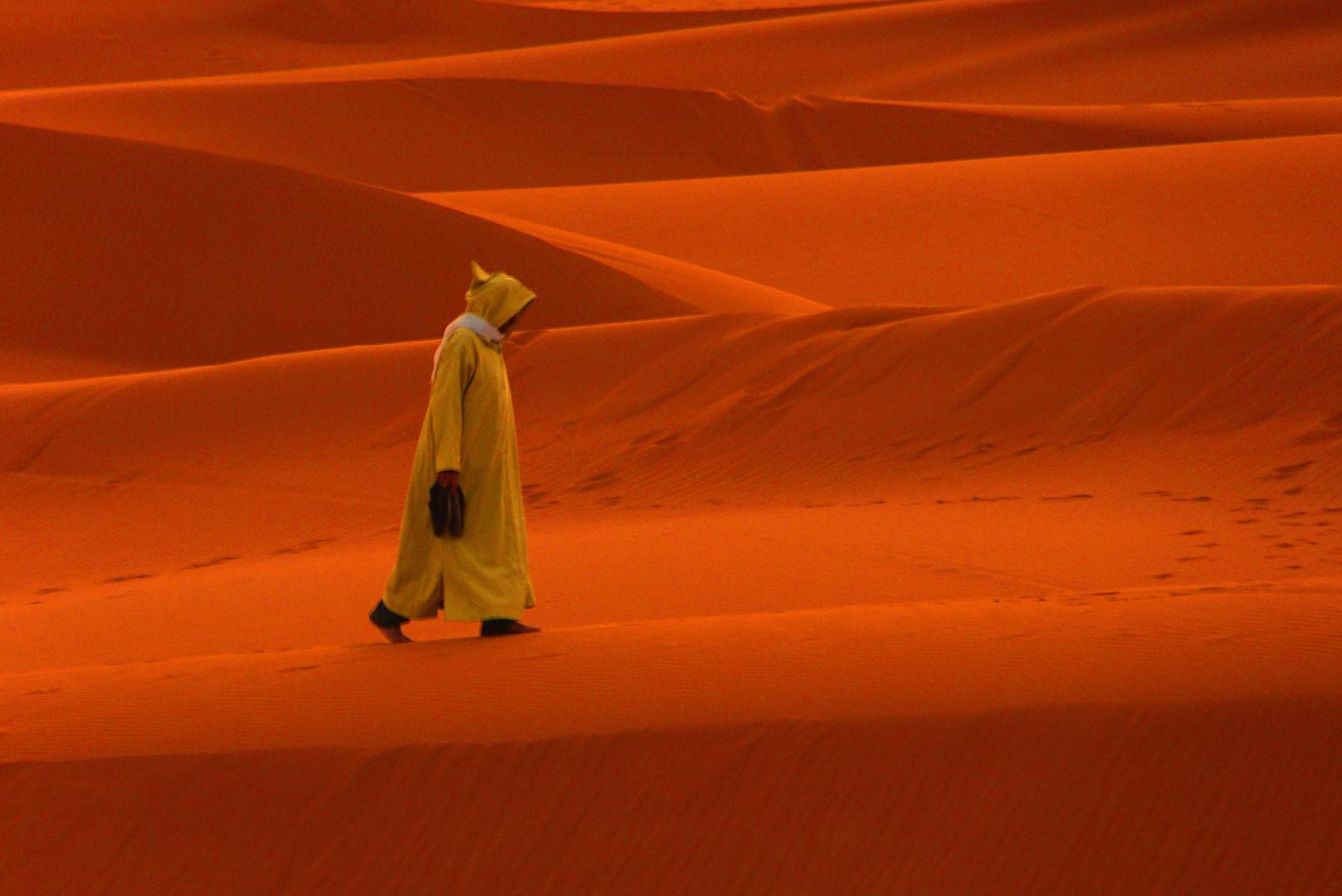 Wanderer in der Wüste