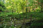 Wanderfreuden  Fernwanderweg E 6 bei Hann Münden