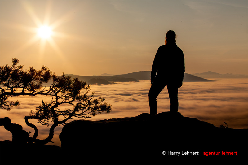 Wanderin über dem Nebelmeer