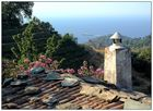 Wandern auf Samos: dort wo der Götterwein wächst...