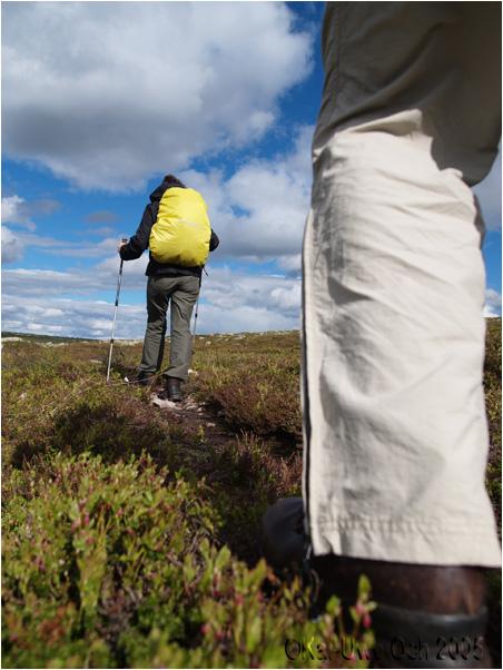 Wandern im schwedischen Fjäll